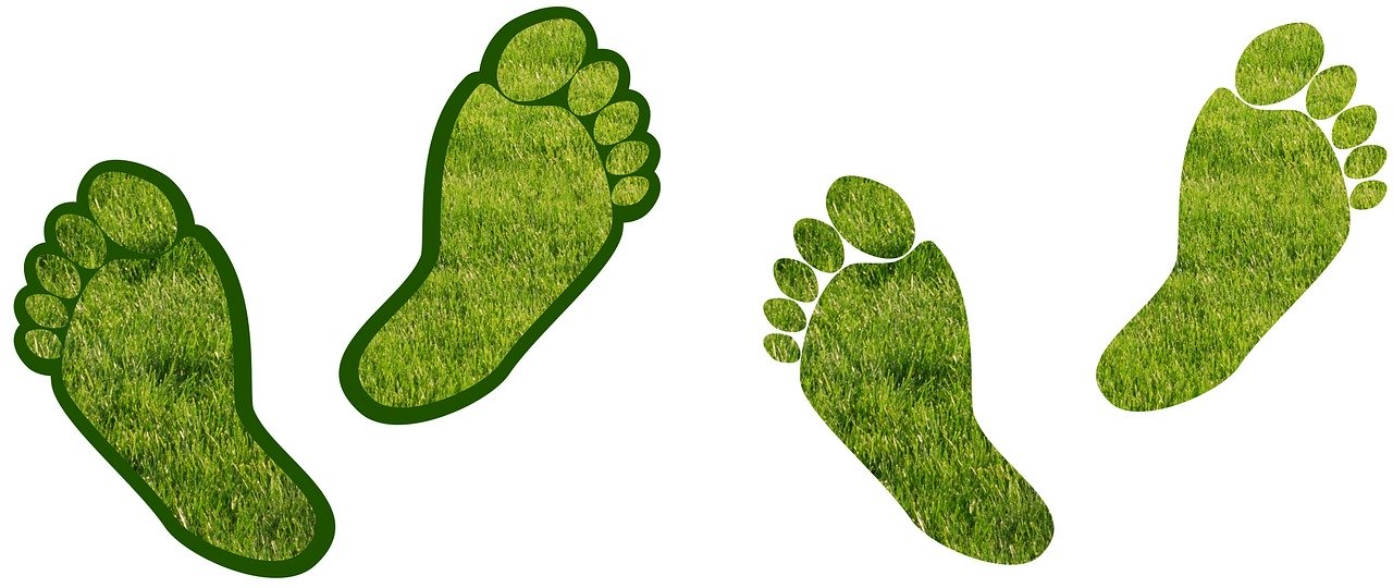 7 Unusual Tips to Reduce Your Carbon Footprint